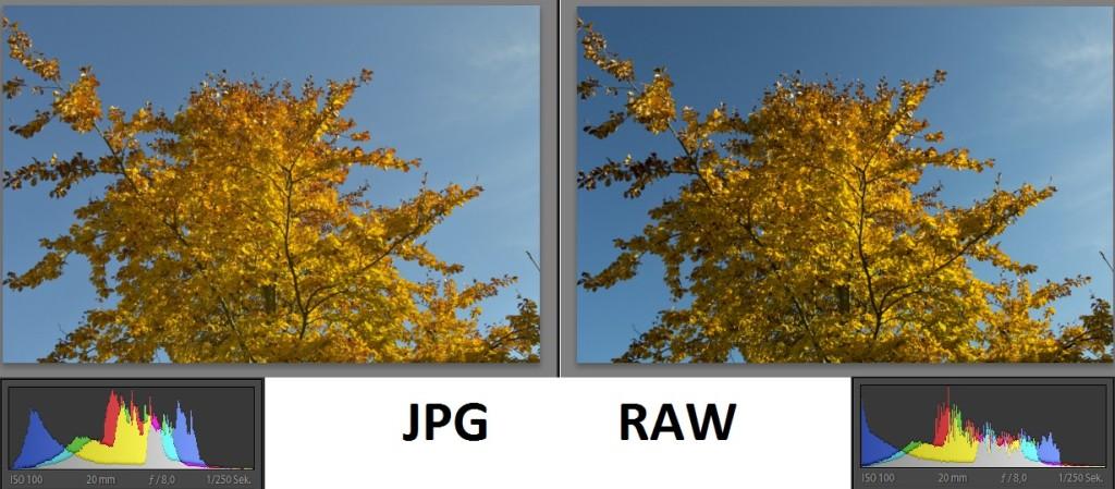 Raw oder JPG