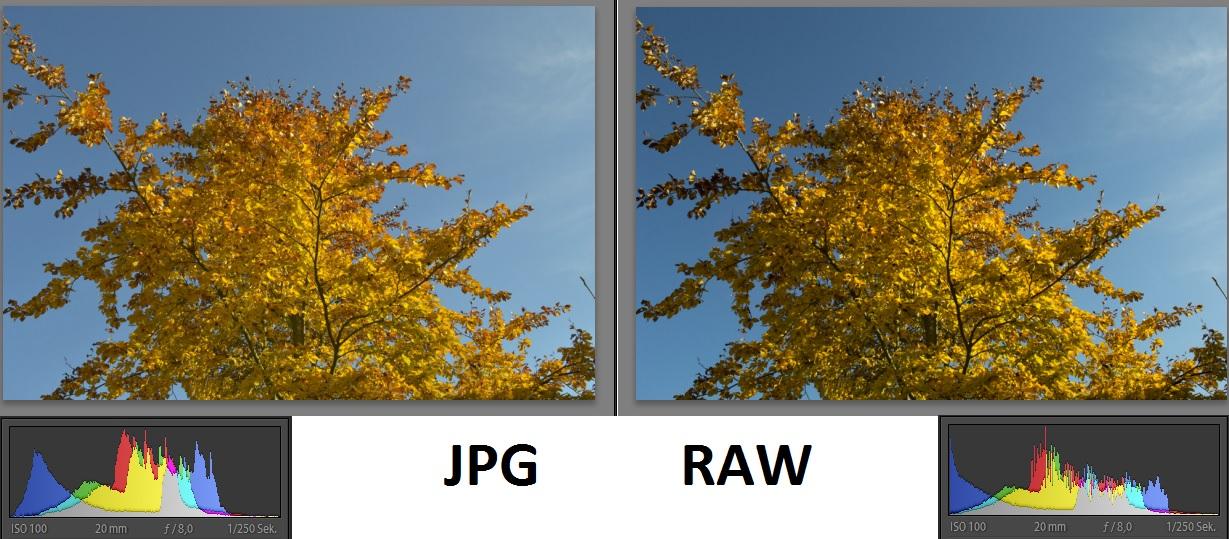Fotografie_Grundlagen_JPG-RAW_Basics
